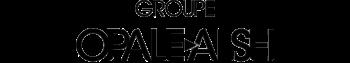 logo Groupe Opale Alsei